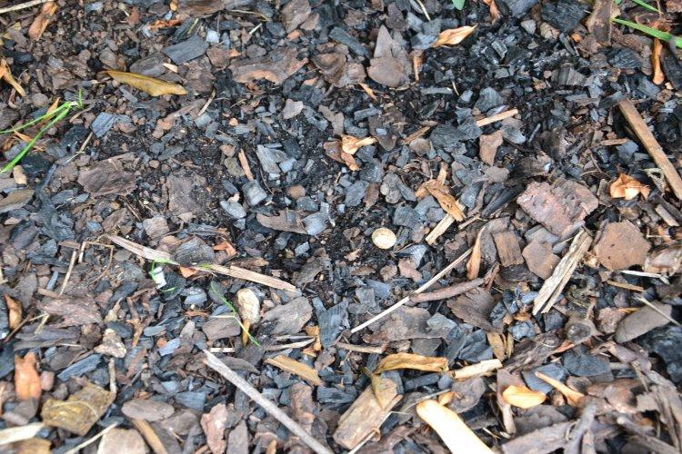 Pevný uhlík je možné využít rovněž pro mulčování